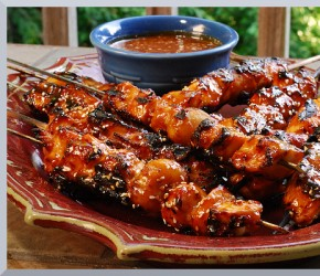 Personal Gourmet BBQ Honey Chicken Kabobs